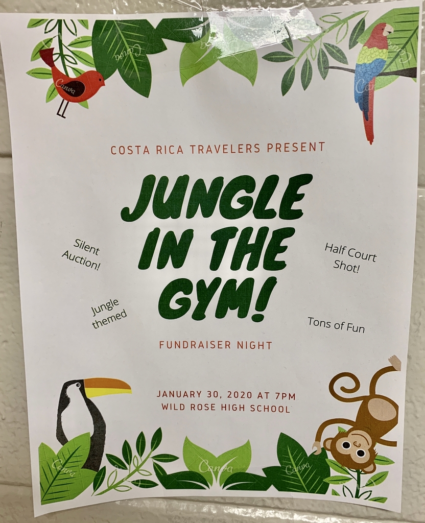 Jungle in the Gym!